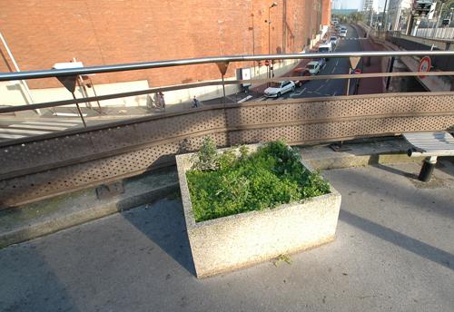 petit jardin de banlieue à la gare de Puteaux