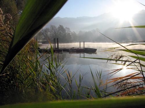 étang de la Rochette