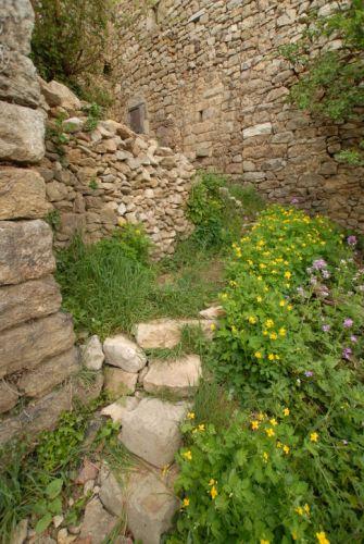 Petit mur en Ardèche en pierre sèche