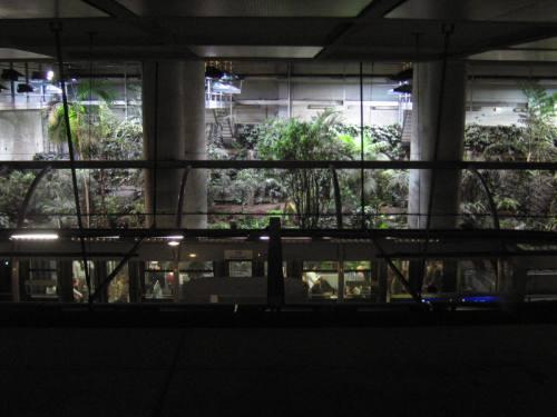jardin gare de Lyon